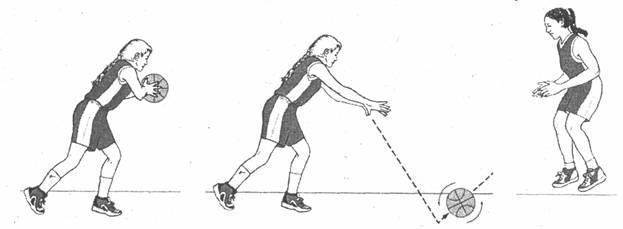 Netball Club – Sporting Achievements